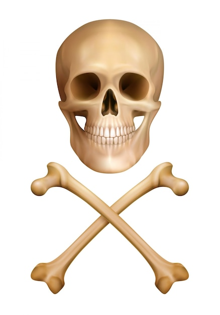 Traditional warning of danger  concept in realistic style with human skull and crossed bones Free Vector