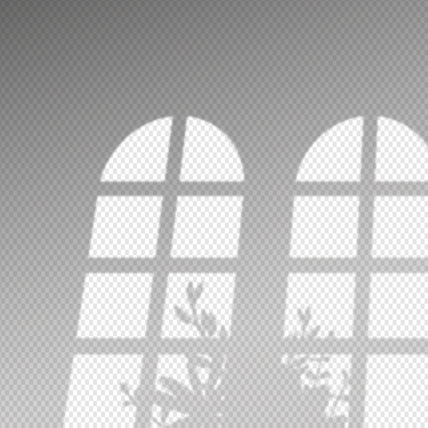 Transparent shadows overlay effect and bush of leaves Free Vector
