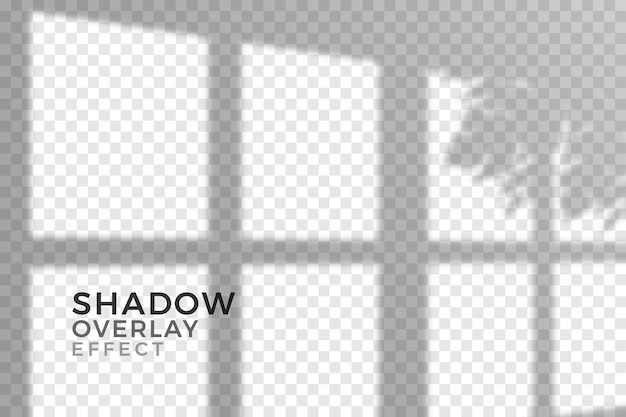 Transparent shadows overlay effect design Free Vector