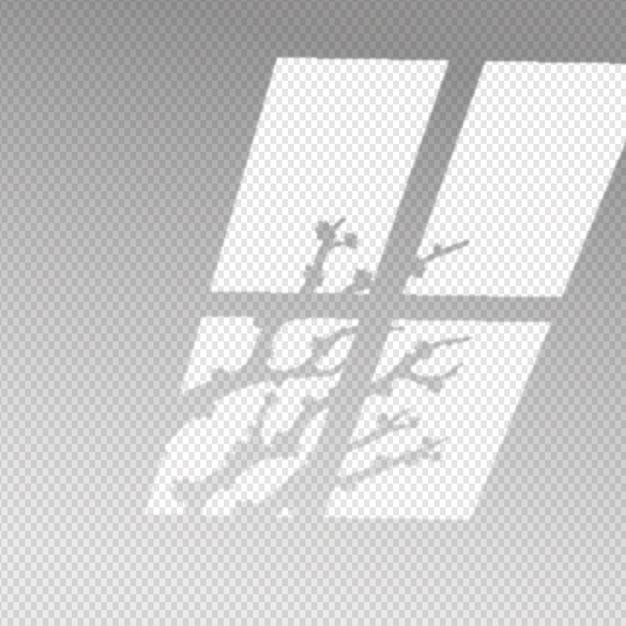 秋の枝で透明な影のオーバーレイ効果 無料ベクター