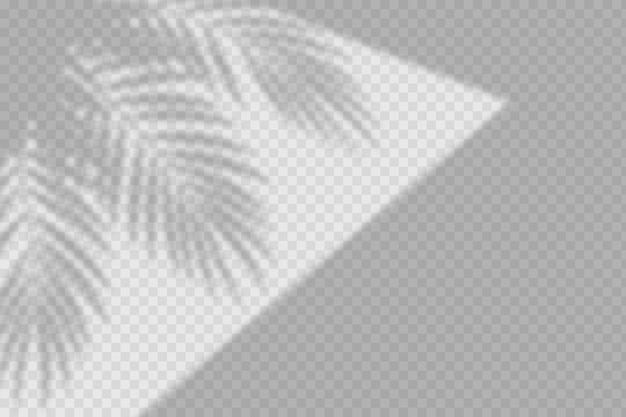 Transparent shadows overlay effect with foliage Free Vector