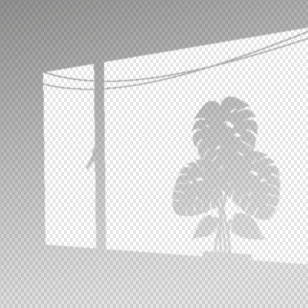 Ombre trasparenti effetto sovrapposizione con foglie di monstera Vettore gratuito