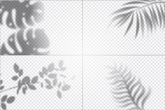 Прозрачный эффект наложения теней Бесплатные векторы