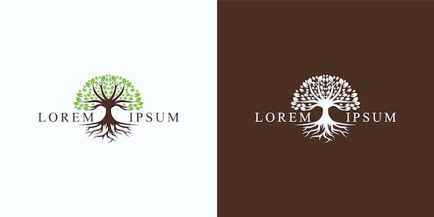 Логотип дерева и корней. зеленый сад Premium векторы