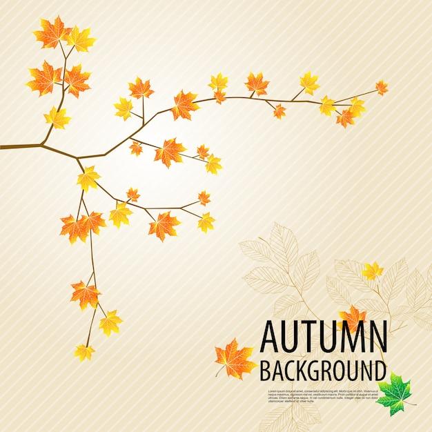 Осенний фон ветви дерева Premium векторы
