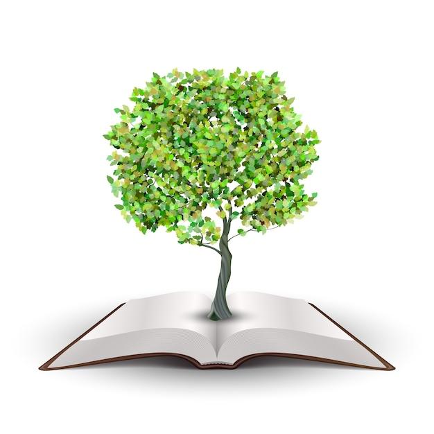 Albero che cresce dal libro aperto vettore isolato su bianco Vettore gratuito