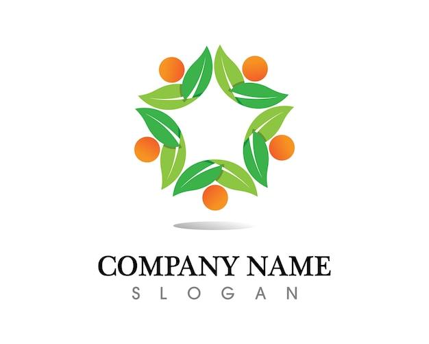 Tree leaf vector logo design, eco-friendly concept. Premium Vector