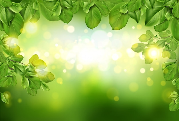 Tree leaves border on green abstract defocused background Free Vector