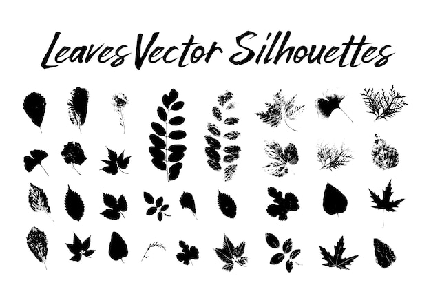 Tree leaves silhouettes. plants and nature Free Vector