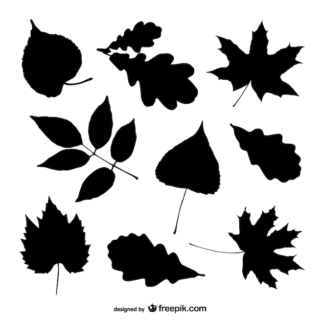 Tree Leaves Silhouettes Set Vector Free Download