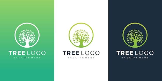 Шаблон логотипа дерева Premium векторы