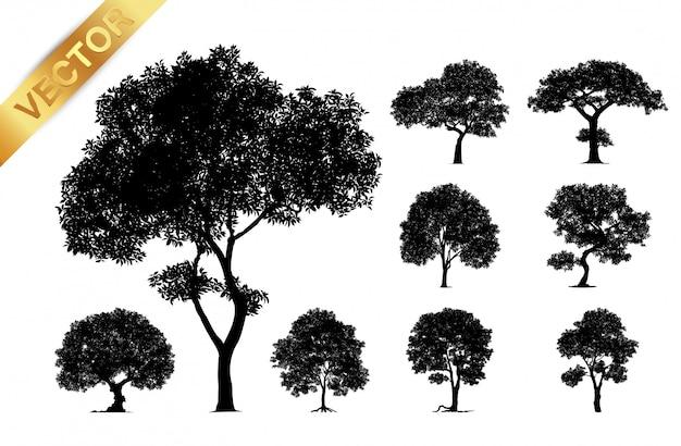 나무 실루엣 흰색 배경에 고립입니다. 프리미엄 벡터