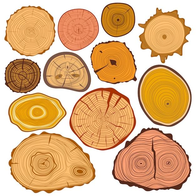木のスライステクスチャtreeeサークルカット原料セット Premiumベクター
