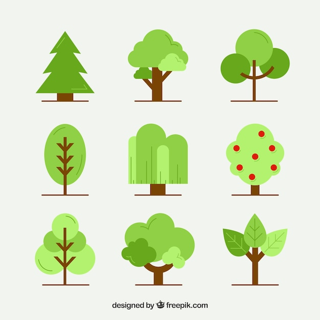 Trees collection in flat style Free Vector