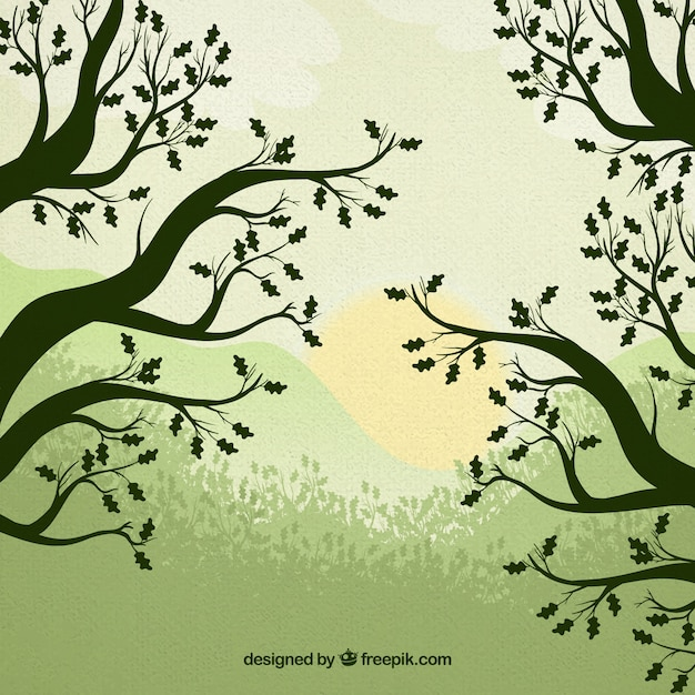 Trees silhouettes nature background