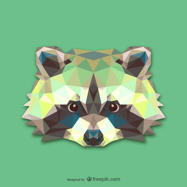 Triangle raccoon design Free Vector