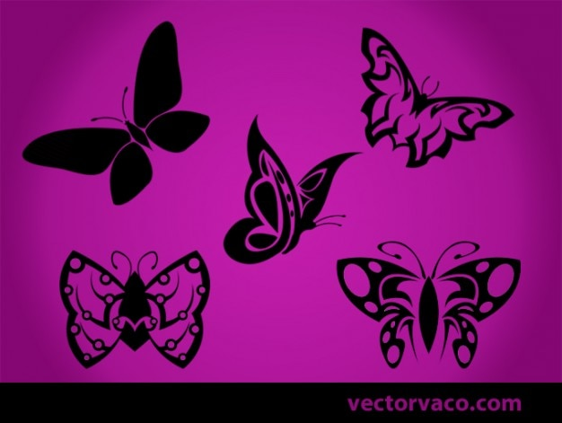 Tribal butterfly Vector | Free Download