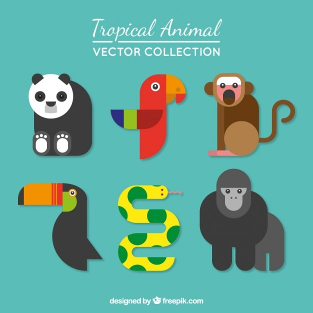 Tropical animal collection in modern\ style