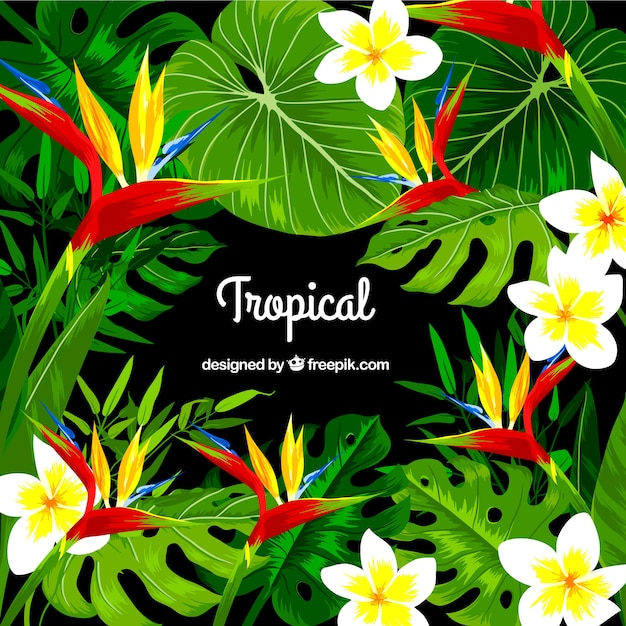 Tropical background design Free Vector