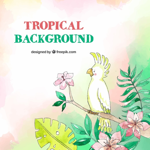 Tropical background with birds and leaves in\ watercolor style