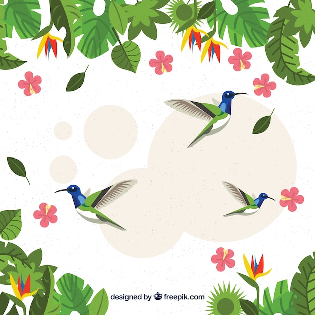Tropical background with birds and plants Free Vector