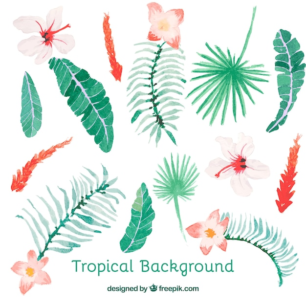 Tropical background with leaves and flowers in\ watercolor style