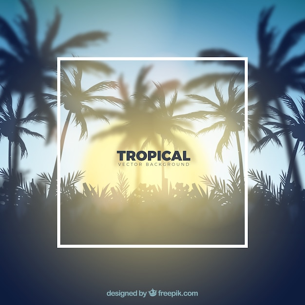 Tropical background with realistic design Free Vector
