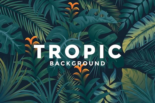 Tropical background Premium Vector