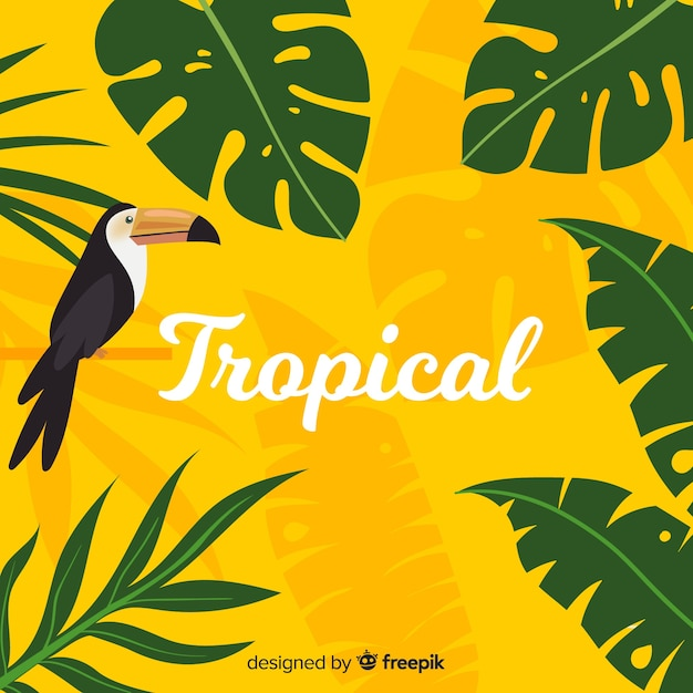 熱帯の背景 無料ベクター