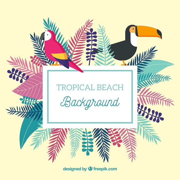 Tropical beach background with birds