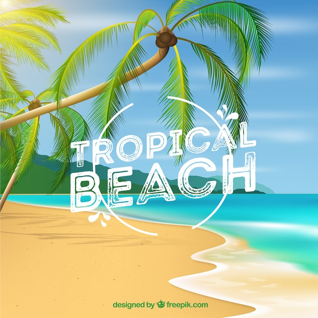 Tropical beach background with palms in realistic style Free Vector