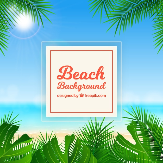 Tropical beach with realistic design Free Vector