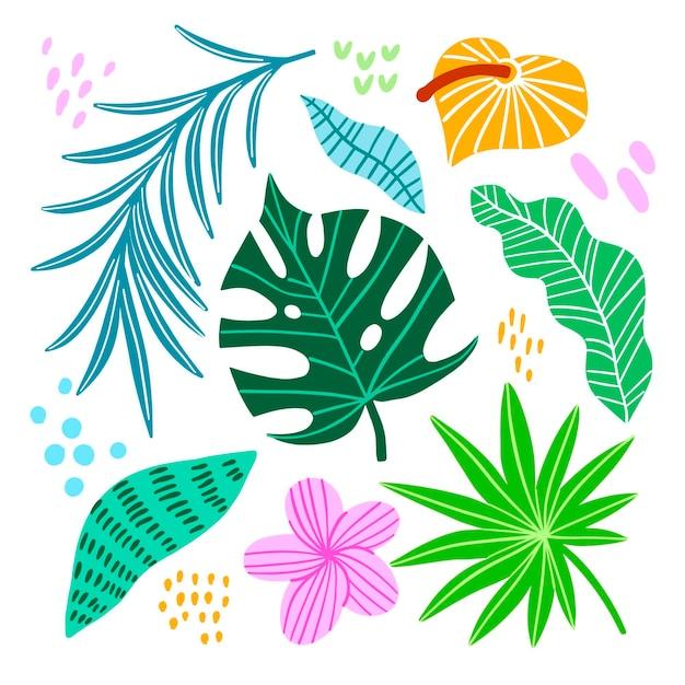 열 대 화려한 잎과 꽃 무료 벡터