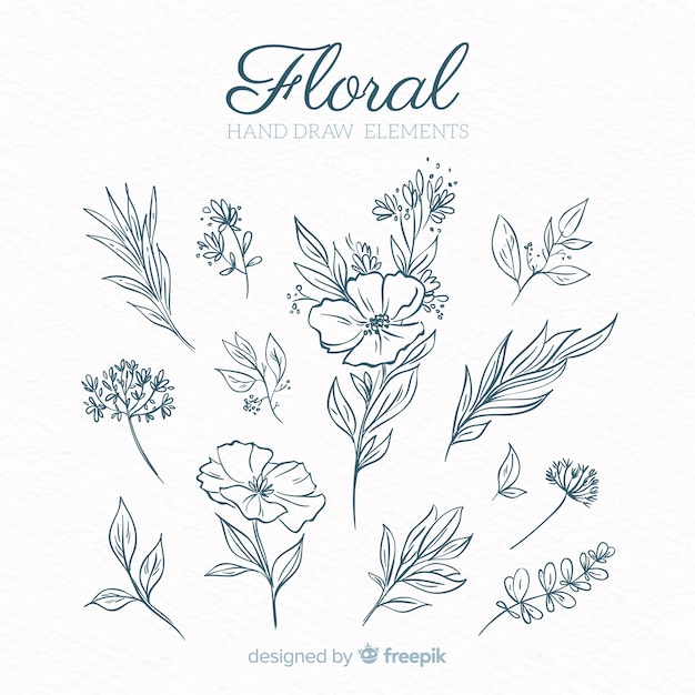 Tropical decoration element collection Free Vector
