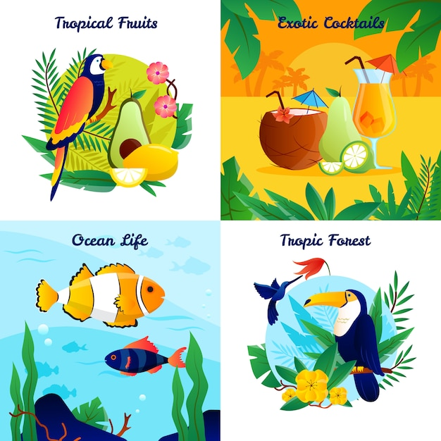 Tropical design concept with fruits exotic cocktails ocean life vector illustration Free Vector