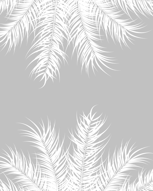 Tropical Design With White Palm Leaves And Plants On Gray Background
