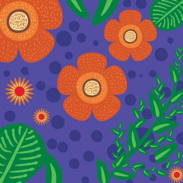 Tropical endemic flower - rafflesia arnoldii Premium Vector
