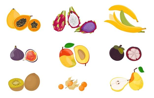 Набор тропических экзотических фруктов. сырая вегетарианская пища. иллюстрация мультфильм плоская коллекция иконок, изолированных на белом. Premium векторы