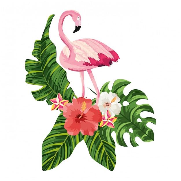 Tropical flamingo cartoon Premium Vector