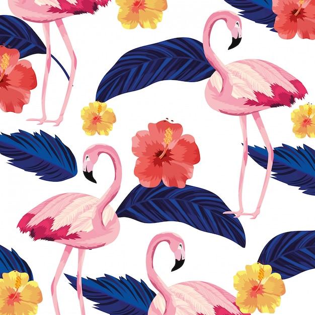 Tropical flamingos cartoon Premium Vector
