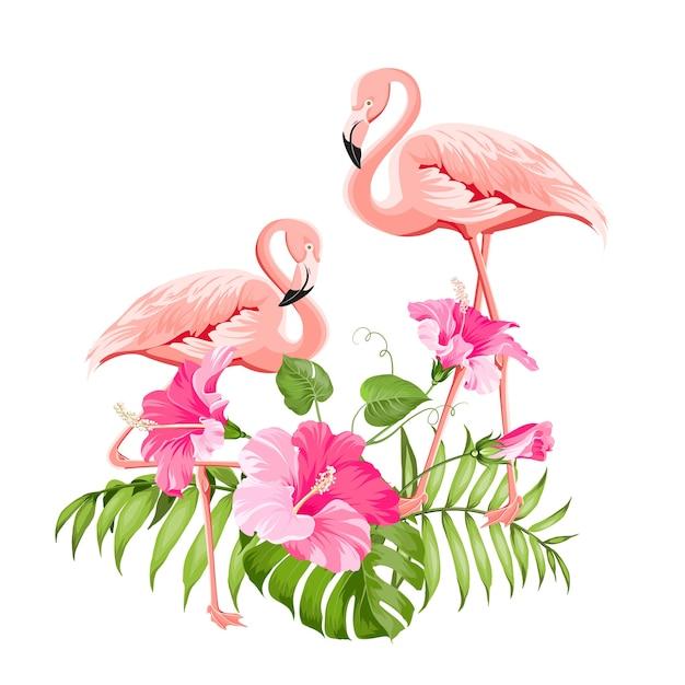 Тропический цветок и фламинго на белом фоне. векторная иллюстрация. Бесплатные векторы