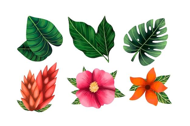 Коллекция тропических цветов и листьев Бесплатные векторы