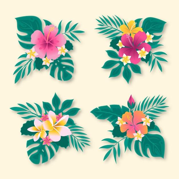 Confezione di fiori e foglie tropicali Vettore gratuito