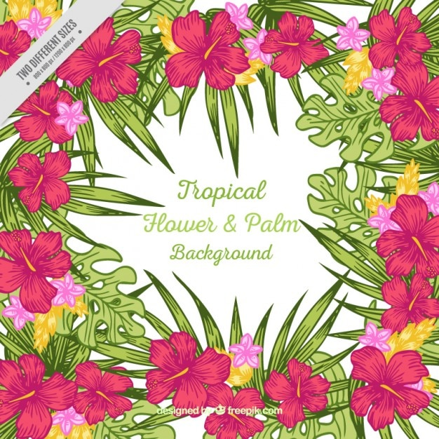 Tropical Flower Palm Background Free Vector