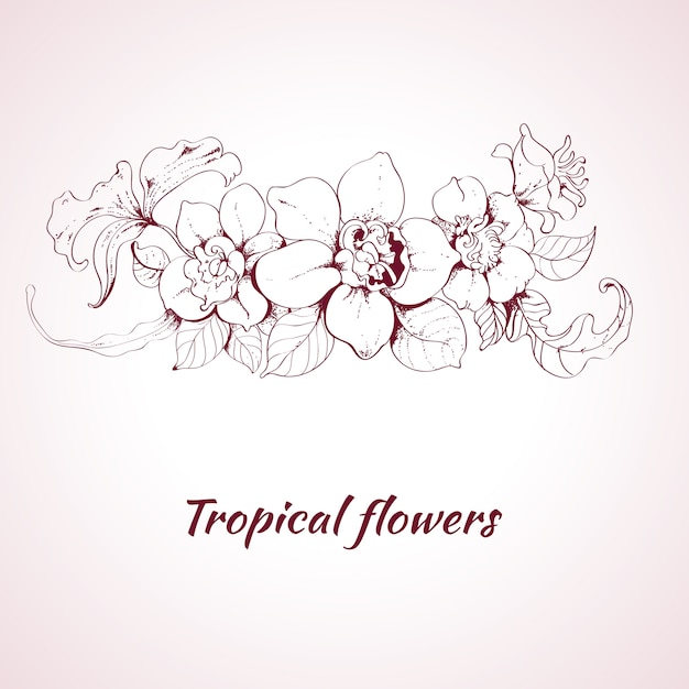 Tropical flower sketch Free Vector