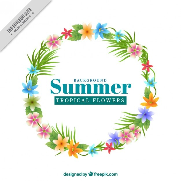 Tropical flower summer background
