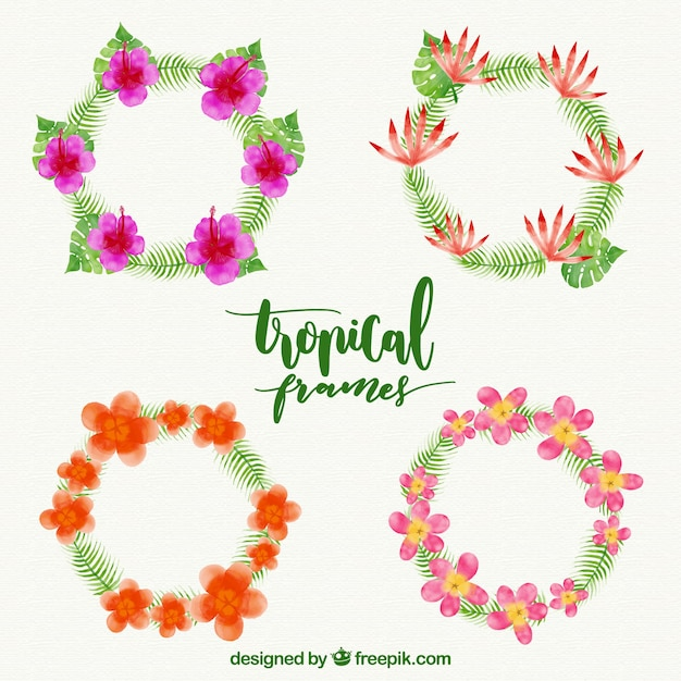Tropical flower watercolor frames