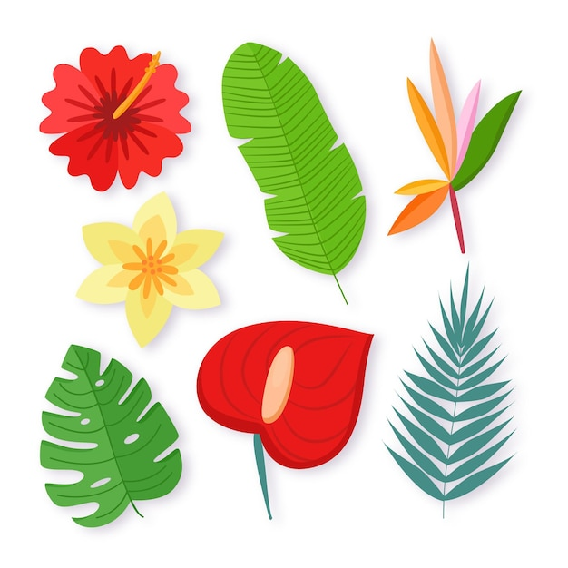 열 대 꽃과 잎 팩 무료 벡터