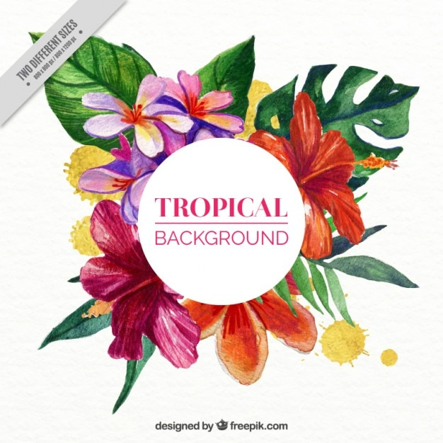 Tropical Flowers Background In Watercolor Effect Vector