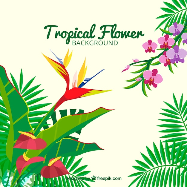 Tropical flowers background with leaves of palm\ trees